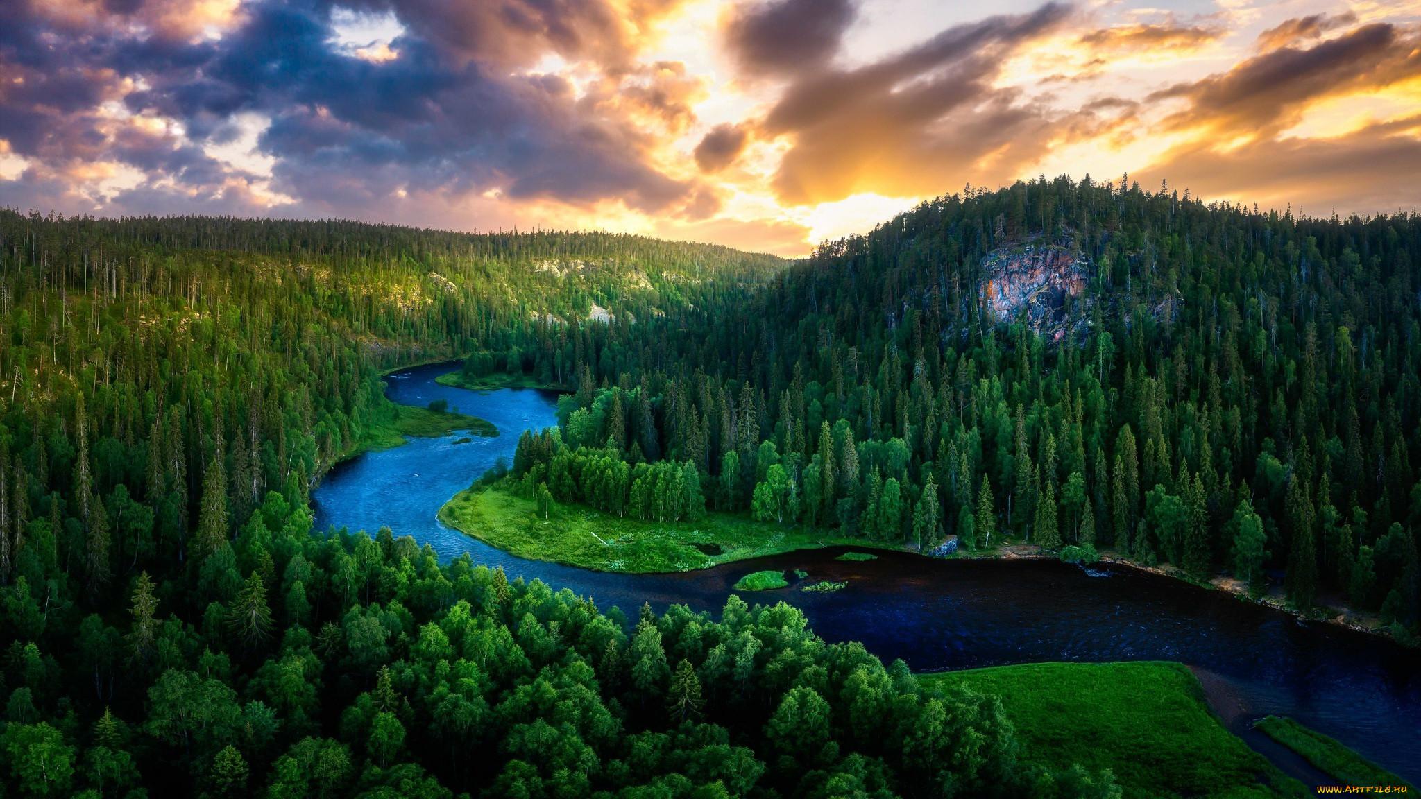 природа, реки, озера, лес, лето, река